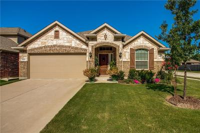 Frisco Single Family Home For Sale: 5200 Texana Drive