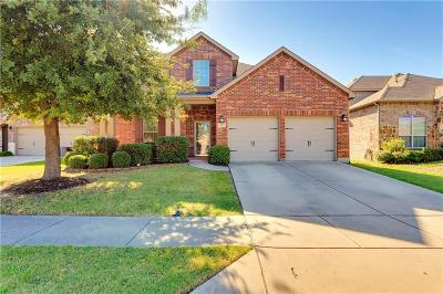 Little Elm Single Family Home For Sale: 213 Willet Court