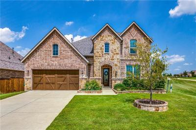 Prosper Single Family Home For Sale: 881 Yellowcress Dr