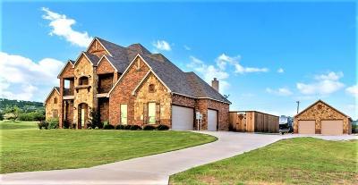Graford Single Family Home For Sale: 122 Turtle Dove Lane