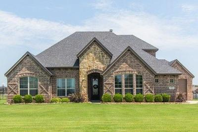 Parker County Single Family Home For Sale: 125 Backstretch Lane