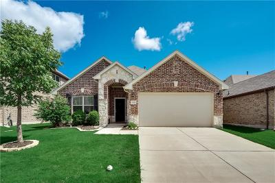 Little Elm Single Family Home For Sale: 401 Bird Creek Drive