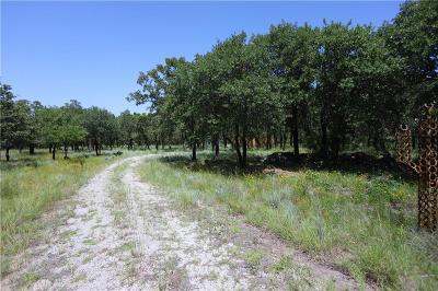 Gordon Residential Lots & Land For Sale: 425 Canyon Lake Road