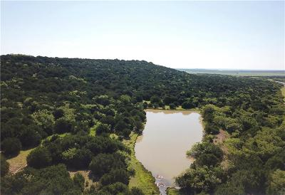 Palo Pinto County Farm & Ranch Active Option Contract: Tbd Hwy 337
