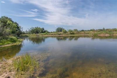 Mills County Farm & Ranch For Sale: 43 N County Road 538