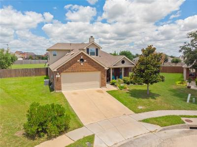 Euless Single Family Home For Sale: 14133 Dream River Trail