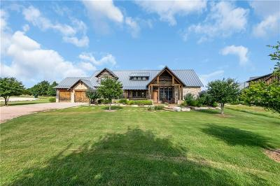 Palo Pinto County Single Family Home For Sale: 1185 Grandview Drive