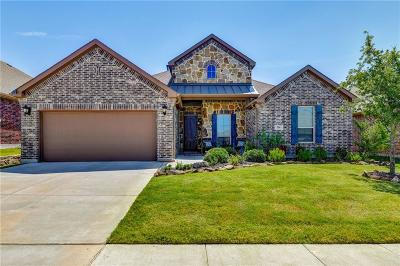 Denton County Single Family Home For Sale: 216 Palomino Road