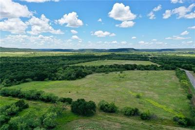 Palo Pinto County Farm & Ranch For Sale: Fm 919 Road
