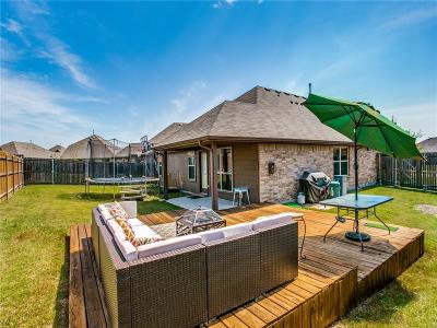 Little Elm Single Family Home For Sale: 804 Goldenmist Drive