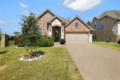 Plano Single Family Home For Sale: 805 Wildrye Drive