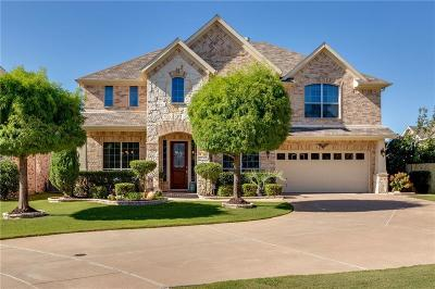 Fort Worth Single Family Home For Sale: 10100 Vintage Drive