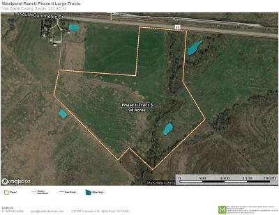 Wills Point Farm & Ranch For Sale: Tbd Hwy 80 Tract 3
