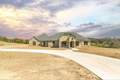 Parker County Single Family Home For Sale: 2407 Cactus Rio Lane