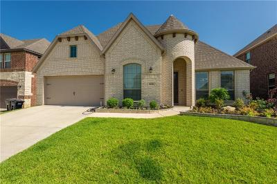 Fort Worth Single Family Home For Sale: 5132 Chisholm View Drive