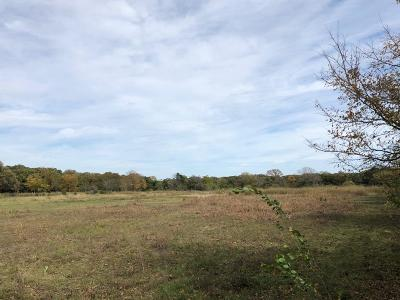 Dallas County Residential Lots & Land For Sale: 1216 Dowdy Ferry Road #Tract3