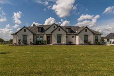 Anna TX Single Family Home For Sale: $495,000
