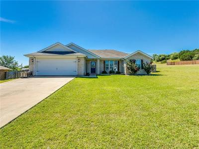 Granbury Single Family Home For Sale: 1307 Shawnee Trail