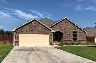 Mineral Wells Single Family Home For Sale: 2309 Springhill Court