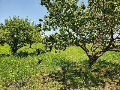 Grayson County Farm & Ranch For Sale: Tbd Dickens Road