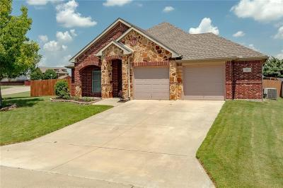 Archer County, Baylor County, Clay County, Jack County, Throckmorton County, Wichita County, Wise County Single Family Home For Sale: 103 Indian Gap Court