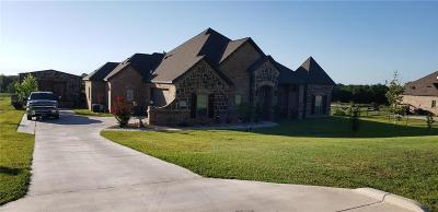 Springtown Single Family Home For Sale: 116 Spring Meadow Drive