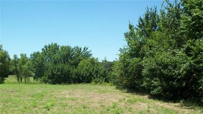 Mineral Wells TX Residential Lots & Land For Sale: $274,400