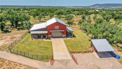 Palo Pinto County Farm & Ranch For Sale: 1380 Fm 3137
