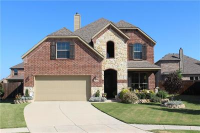 Little Elm Single Family Home For Sale: 1955 Sundown Drive