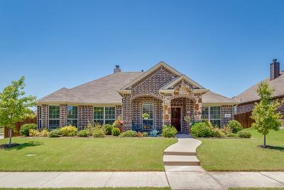 Rockwall Single Family Home For Sale: 1401 Palasades Court