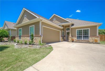 Collin County, Denton County Single Family Home For Sale: 9600 Water Tree Drive