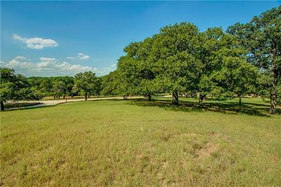 Tarrant County Residential Lots & Land For Sale: 1518 Meandering Way Drive