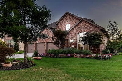Denton County Single Family Home For Sale: 8700 James Drive