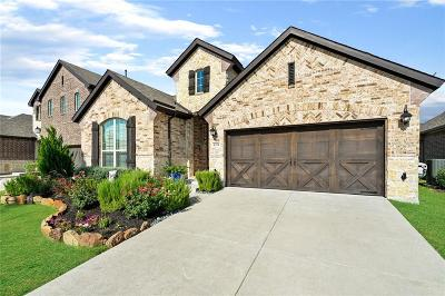 Little Elm Single Family Home For Sale: 4304 Canopy Street