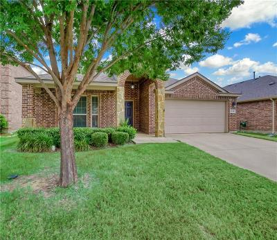 Little Elm Single Family Home For Sale: 1113 Lake Hollow Drive
