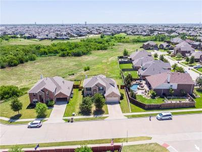 Denton County Single Family Home For Sale: 3101 Sundance Drive