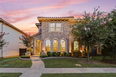 Irving Single Family Home For Sale: 212 Frio Drive