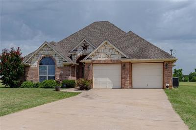 Parker County Single Family Home For Sale: 140 Diamond Ridge Lane