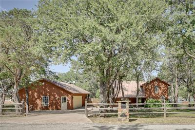 Palo Pinto County Single Family Home For Sale: 398 Deer Trail