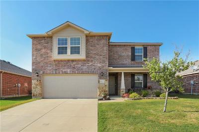 Little Elm Single Family Home For Sale: 14720 Sawmill Drive
