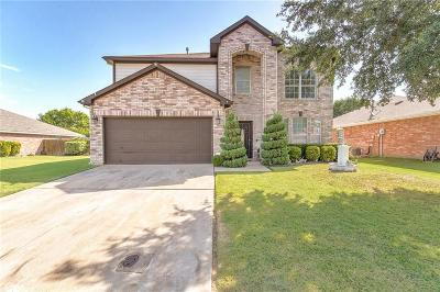 Fort Worth Single Family Home For Sale: 4616 Cool Ridge Court