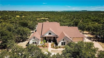 Palo Pinto County Farm & Ranch For Sale: 20600 S Fm 4