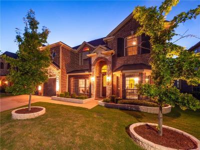 Grand Prairie Single Family Home For Sale: 2728 Ferdinand