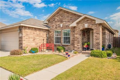 Fort Worth Single Family Home For Sale: 308 Amethyst Drive