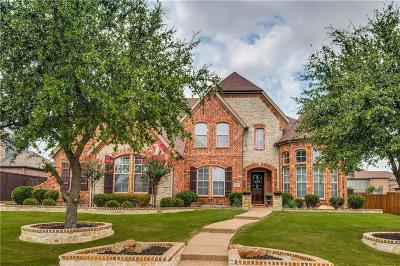 Allen Single Family Home For Sale: 978 Lehigh Lane