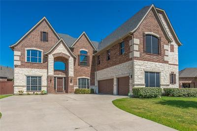 Denton County Single Family Home For Sale: 4136 Choctaw Drive