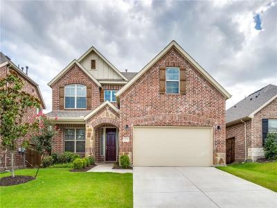 McKinney Single Family Home For Sale: 1005 Llano Falls Drive