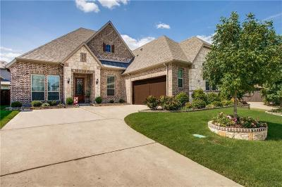 Rockwall Single Family Home For Sale: 905 Amber Knoll Drive