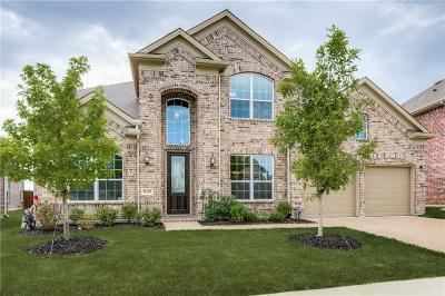 Little Elm Single Family Home For Sale: 809 Frisco Hills Boulevard
