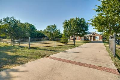 Willow Park Single Family Home For Sale: 320 Pitchfork Trail